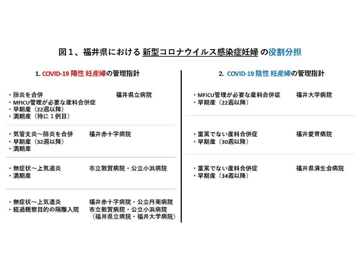 感染 福井 コロナ
